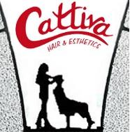 Cattiva Hair & Esthetics